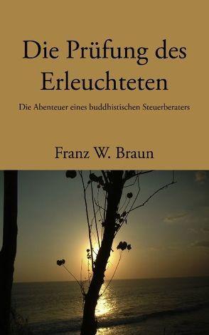 Die Prüfung des Erleuchteten von Braun,  Franz W.