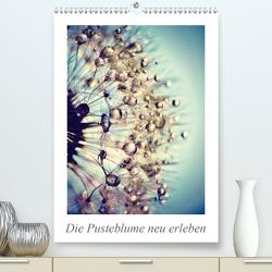 Die Pusteblume neu erleben (Premium, hochwertiger DIN A2 Wandkalender 2020, Kunstdruck in Hochglanz) von Delgado,  Julia