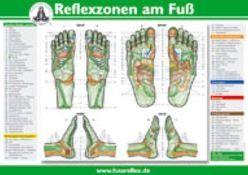 Die Reflexzonen der Füße von Marquardt,  Hanne