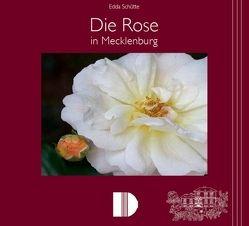 Die Rose in Mecklenburg von Herzogin zu Mecklenburg von Solodkoff,  Donata, Schütte,  Edda