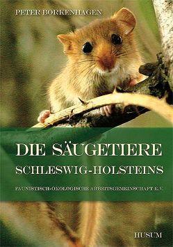 Die Säugetiere Schleswig-Holsteins von Borkenhagen,  Peter