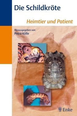 Die Schildkröte von Kölle,  Petra, Pees,  Michael