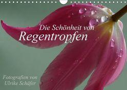 Die Schönheit von Regentropfen (Wandkalender 2018 DIN A4 quer) von Schäfer,  Ulrike