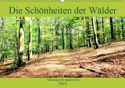 Die Schönheiten der Wälder – Stimmungsvolle Impressionen (Wandkalender 2019 DIN A2 quer) von Klatt,  Arno