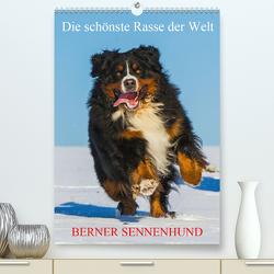 Die schönste Rasse der Welt – Berner Sennenhund (Premium, hochwertiger DIN A2 Wandkalender 2020, Kunstdruck in Hochglanz) von Starick,  Sigrid