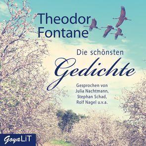Die schönsten Gedichte von Fontane,  Theodor, Nachtmann,  Julia, Schad,  Stephan, und,  v.a.