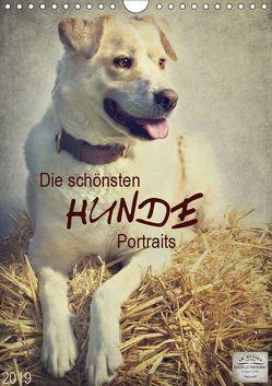 Die schönsten Hunde Portraits (Wandkalender 2019 DIN A4 hoch) von DESIGN Photo + PhotoArt,  AD, Dölling,  Angela