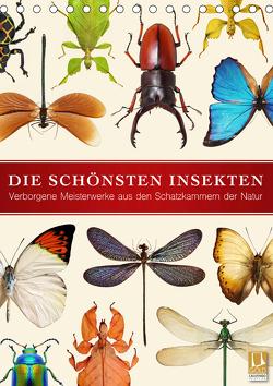 Die schönsten Insekten (Tischkalender 2020 DIN A5 hoch) von Art Print,  Wildlife