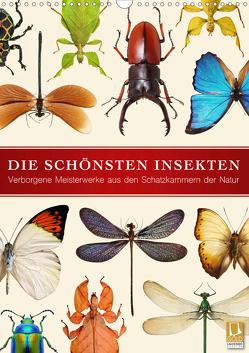 Die schönsten Insekten (Wandkalender 2020 DIN A3 hoch) von Art Print,  Wildlife