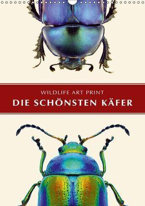 Die schönsten Käfer (Wandkalender 2018 DIN A3 hoch) von Art Print,  Wildlife