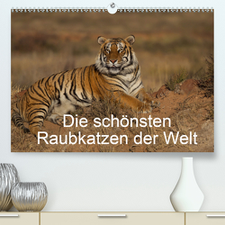 Die schönsten Raubkatzen der Welt (Premium, hochwertiger DIN A2 Wandkalender 2020, Kunstdruck in Hochglanz) von Vollborn,  Marion
