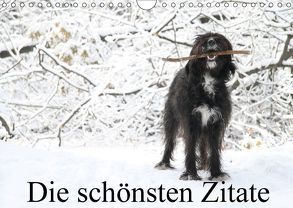 Die schönsten Zitate (Wandkalender 2018 DIN A4 quer) von Itschert,  Clarissa