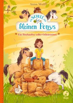 Die Schule der kleinen Ponys – Ein Heuhaufen voller Geheimnisse von Reitz,  Nadine, Wolff,  Anne