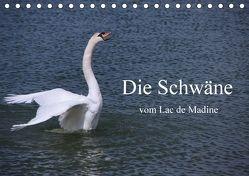 Die Schwäne vom Lac de Madine (Tischkalender 2018 DIN A5 quer) von Nitzold-Briele,  Gudrun