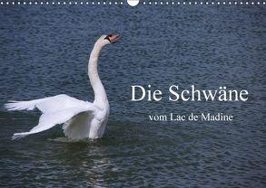 Die Schwäne vom Lac de Madine (Wandkalender 2018 DIN A3 quer) von Nitzold-Briele,  Gudrun