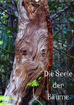 Die Seele der Bäume (Wandkalender 2020 DIN A2 hoch) von Struve,  Andreas
