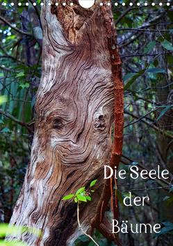 Die Seele der Bäume (Wandkalender 2020 DIN A4 hoch) von Struve,  Andreas