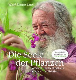 Die Seele der Pflanzen von Storl,  Wolf-Dieter