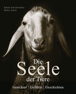Die Seele der Tiere von Remy-Schwabenthan,  Sabine, Schels,  Walter