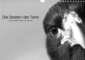 Die Seelen der wilden Tiere (Wandkalender 2018 DIN A4 quer) von Skrypzak,  Rolf