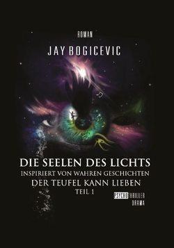 Die Seelen des Lichts von Bogicevic,  Jay