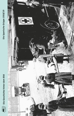 Die Spanische Grippe 1918/19 von Michels,  Eckard