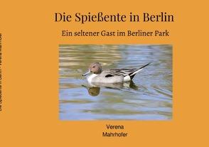 Die Spießente in Berlin von Mahrhofer,  Verena