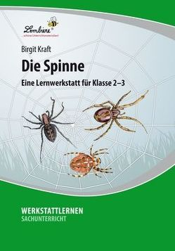 Die Spinne von Kraft,  Birgit