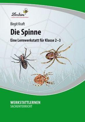 Die Spinne: Eine Lernwerkstatt für den Sachunterricht in Klasse 2 – 3, Werkstattmappe von Kraft,  Birgit