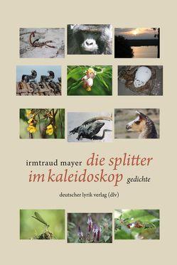 die splitter im kaleidoskop von Mayer,  Irmtraud