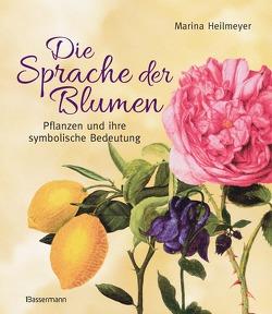 Die Sprache der Blumen von Heilmeyer,  Marina
