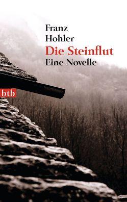 Die Steinflut von Hohler,  Franz