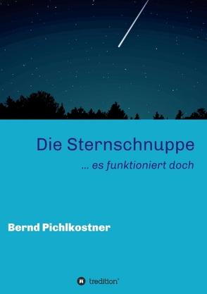 Die Sternschnuppe von Pichlkostner,  Bernd