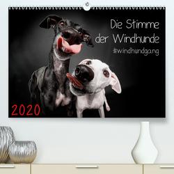 Die Stimme der Windhunde (Premium, hochwertiger DIN A2 Wandkalender 2020, Kunstdruck in Hochglanz) von Gier,  Marcus