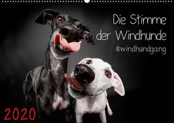Die Stimme der Windhunde (Wandkalender 2020 DIN A2 quer) von Gier,  Marcus
