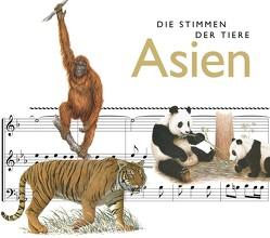 Die Stimmen der Tiere: Asien von Riechelmann,  Cord