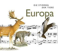 Die Stimmen der Tiere: Europa von Riechelmann,  Cord