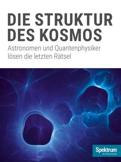 Die Struktur des Kosmos