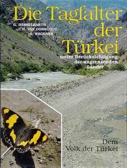 Die Tagfalter der Türkei unter Berücksichtigung der angrenzenden Länder von Hesselbarth,  Gerhard, Oorschot,  Harry van, Wagener,  Sigbert
