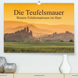 Die Teufelsmauer – Bizarre Felsformationen im Harz (Premium, hochwertiger DIN A2 Wandkalender 2021, Kunstdruck in Hochglanz) von LianeM