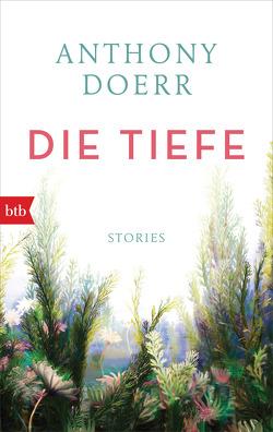 Die Tiefe von Doerr,  Anthony, Löcher-Lawrence,  Werner