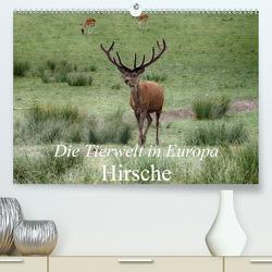 Die Tierwelt in Europa – Hirsche (Premium, hochwertiger DIN A2 Wandkalender 2021, Kunstdruck in Hochglanz) von Kretschmann,  Klaudia