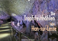 Die Tropfsteinhöhlen von Han-sur-Lesse (Wandkalender 2019 DIN A2 quer) von Haafke,  Udo