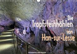 Die Tropfsteinhöhlen von Han-sur-Lesse (Wandkalender 2020 DIN A3 quer) von Haafke,  Udo