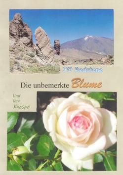 Die unbemerkte Blume von Redstone,  Jo