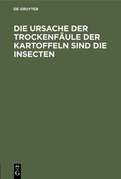 Die Ursache der Trockenfäule der Kartoffeln sind die Insecten