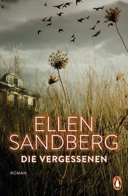 Die Vergessenen von Sandberg,  Ellen