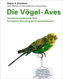 Die Vögel – Aves von Kinzelbach,  Ragnar K.