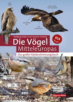 Die Vögel Mitteleuropas nach Fotos bestimmen von Fiedler,  Wolfgang, Fünfstück,  Hans-Joachim