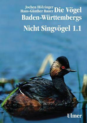 Die Vögel Baden-Württembergs Band 2.0 – Nicht-Singvögel1.1, Nandus bis Flamingos von Bauer,  Hans-Günther, Hölzinger,  Jochen